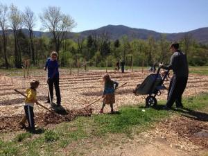 Home Grown Garden Volunteers