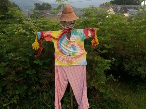 CommunityGardenScarecrow
