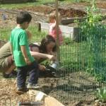 Children Gardening in Swannanoa, NC