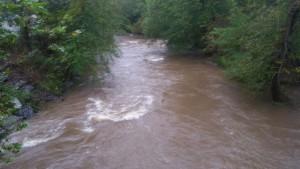 Rain Swollen Swannanoa River