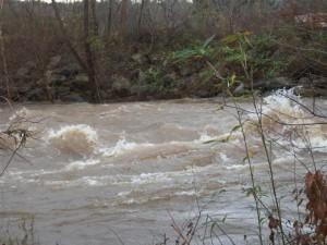 Swannanoa River After Rains