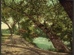 Vintage Postcard of Swannanoa River, NC